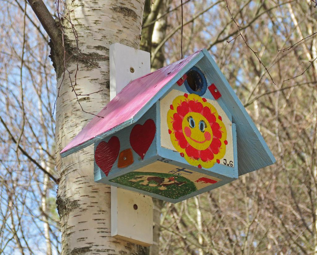 Fåglar och deras ovanliga boende