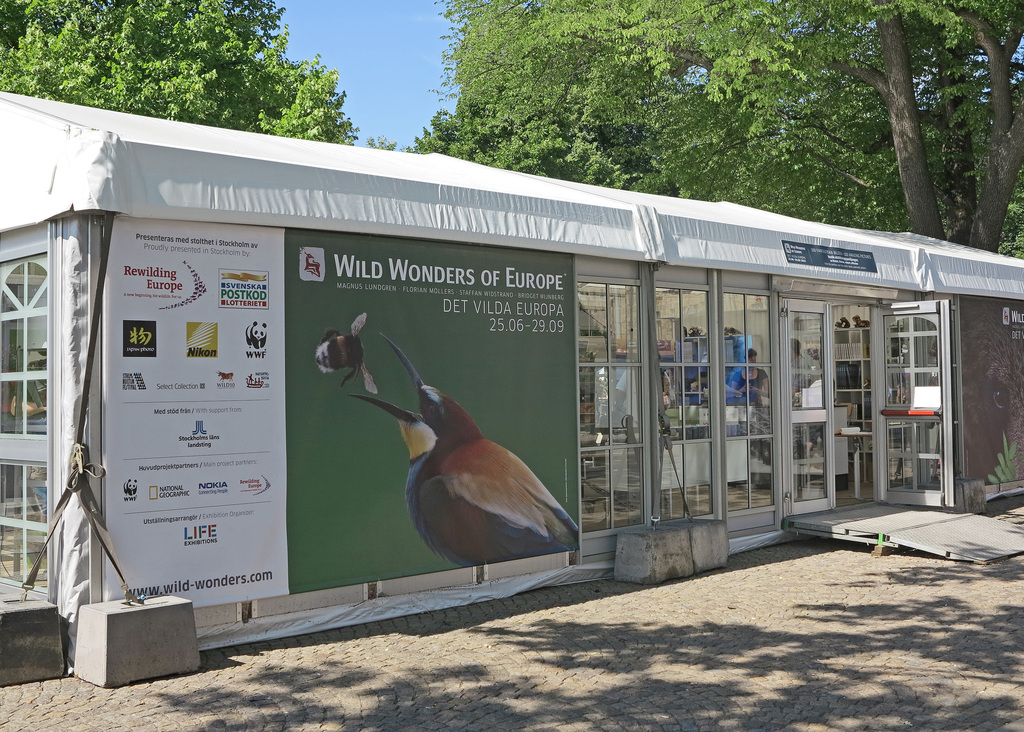 Stockholm Wild wonders of Europe