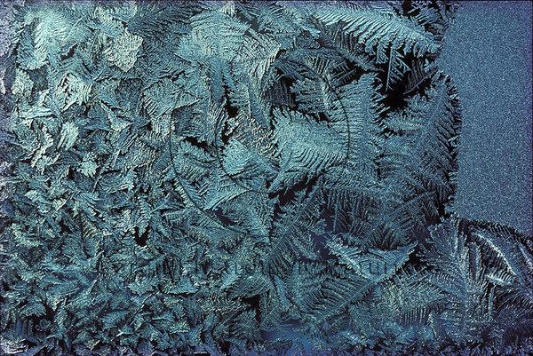 Frostmönster på fönsterruta