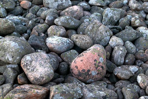 Stenar med lavar.