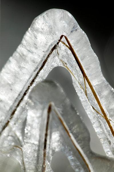 Is på grässtrån.