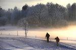 vinter2053.jpg