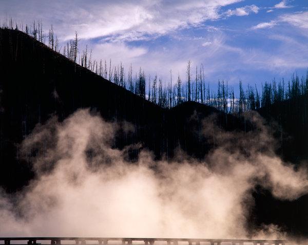 Vattenånga och död skog vid varm källa.