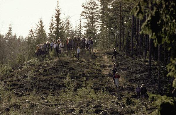 Folksamling tittar på en björn