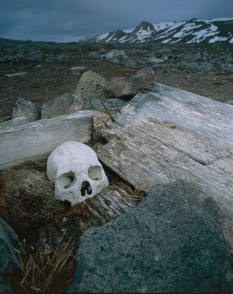 Kranium i grav.