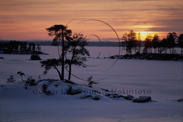 Vinterkväll, Jämtland