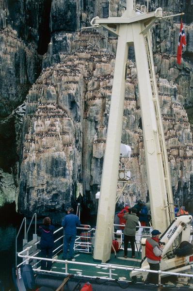 Besökare på båt vid fågelberg.