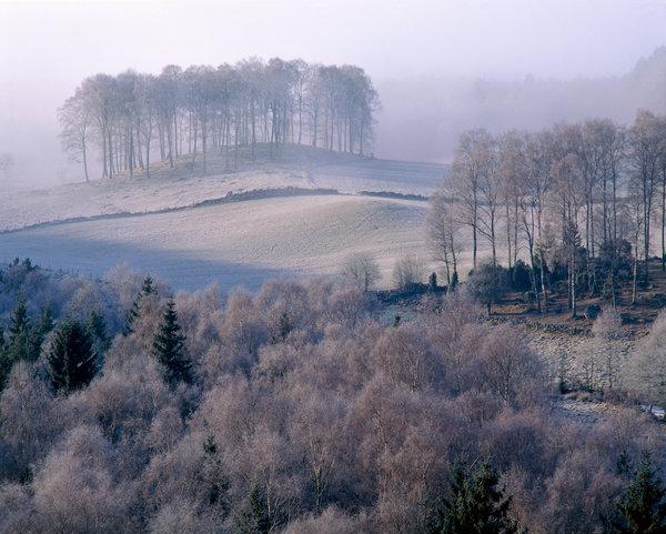 Frostigt landskap.