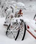 cykelfrost2010.jpg