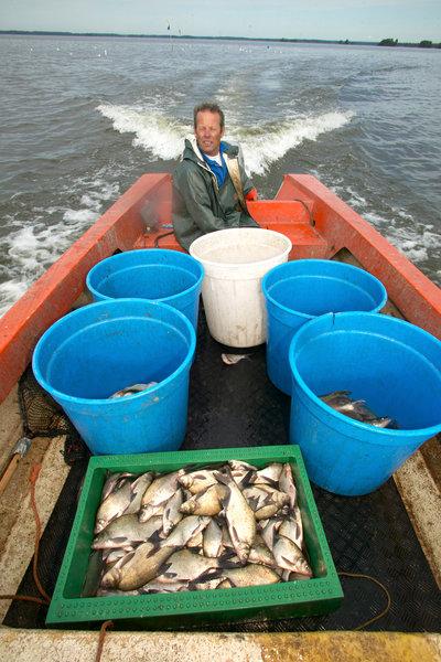 Yrkesfiskare.