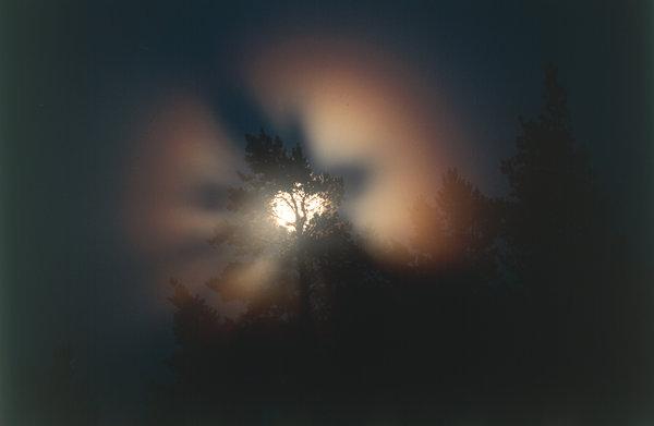 Månsken i dimma.