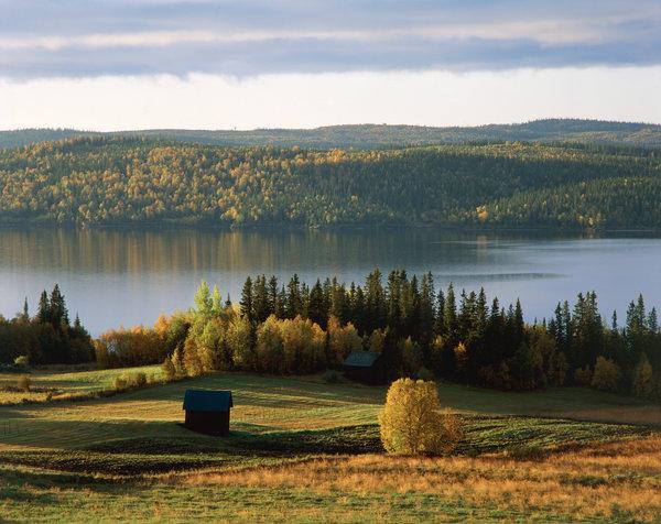 Landskap vid Kallsjön.