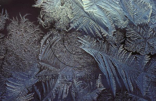 Frost på fönsterruta