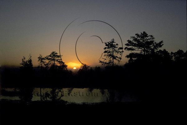 Soluppgång över myr i Värmland