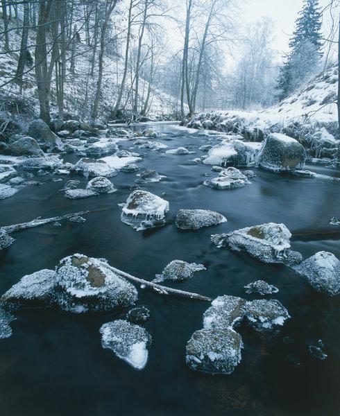 Vinter vid bäcken.