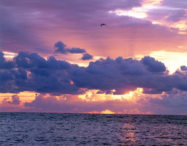 Solnedgång över havet.