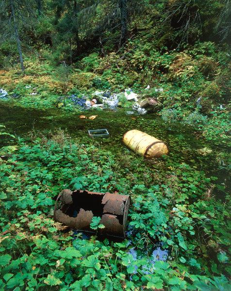 Sopor i skogen.