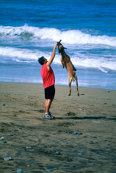 Människa och hund.