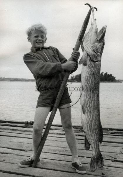 Svenskt Fotoreportages samling