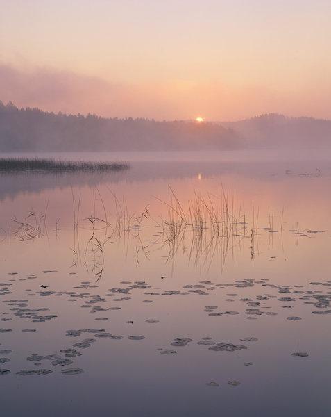 Soluppgång vid sjön Sommen.