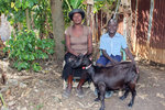soh_dt_haiti_2011_he
