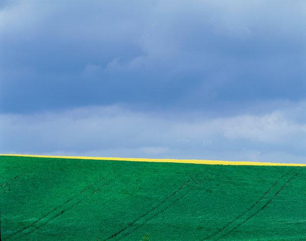 Regnmoln över jordbrukslandskap.