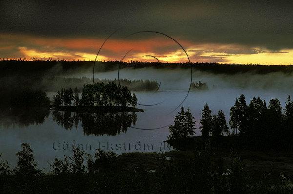 Gryning över skogssjön