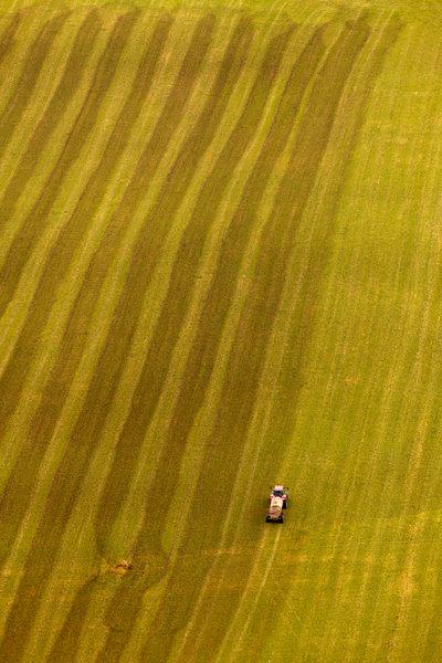 Traktor gödslar åkermarken.