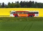 bussraps36.jpg