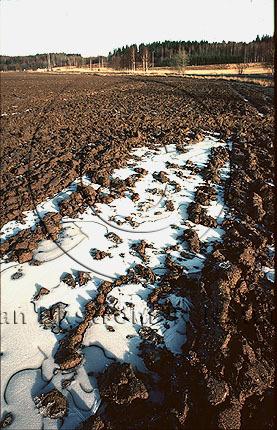 Is på jordbruksmark