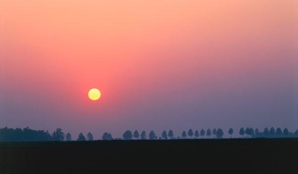 Solnedgång vid allé.