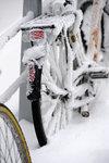 cykelfrost2012.jpg