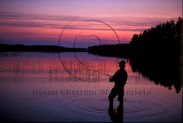 Fiske i den ljusa sommarnatten