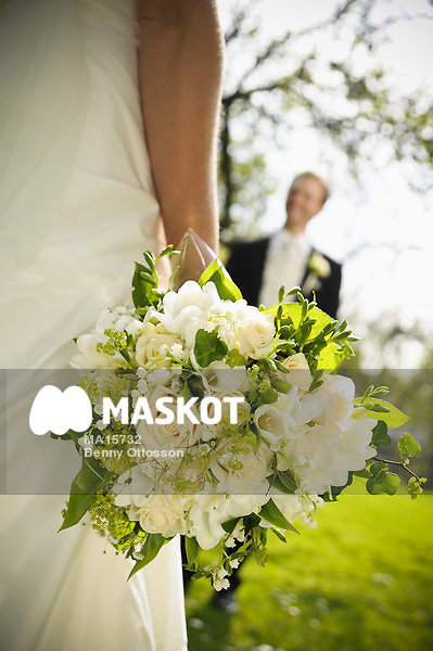 Kärlek - Svenska royaltyfria bilder