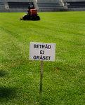 emgrasmatta20133.jpg