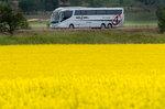 busforyou800.jpg